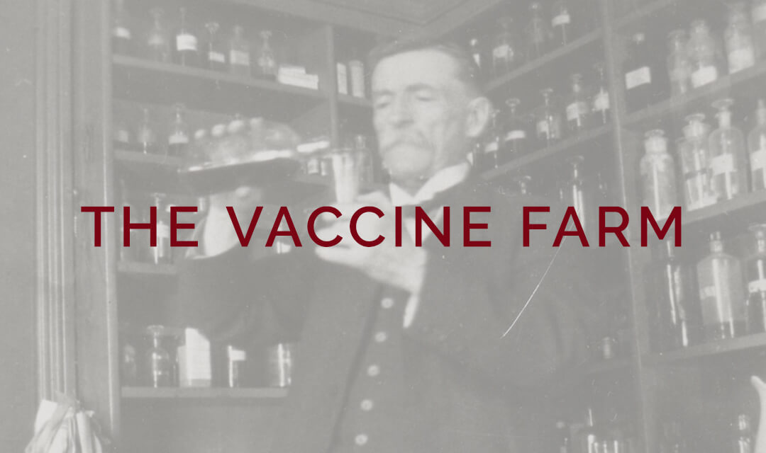 The Vaccine Farm of Palmerston